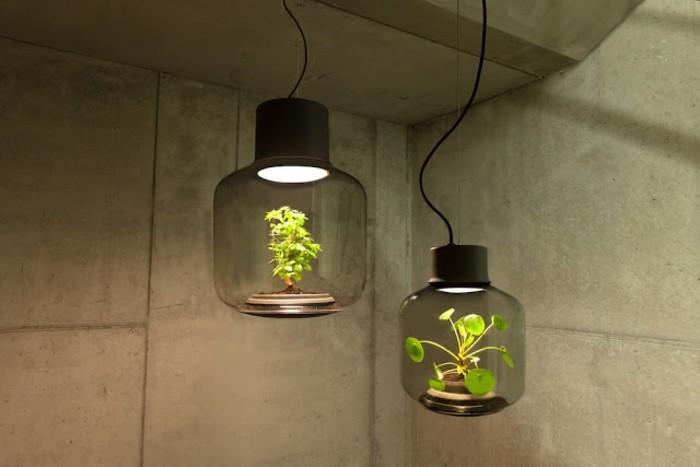fabriquer-un-terrarium-lampe-de-la-lumiere-pour-votre-terrarium-jolie-decoration