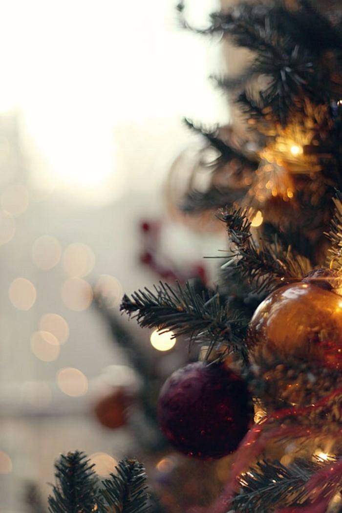 guirlande-lumineuse-noel-exterieur-idee-deco-sapin-beaute-nature