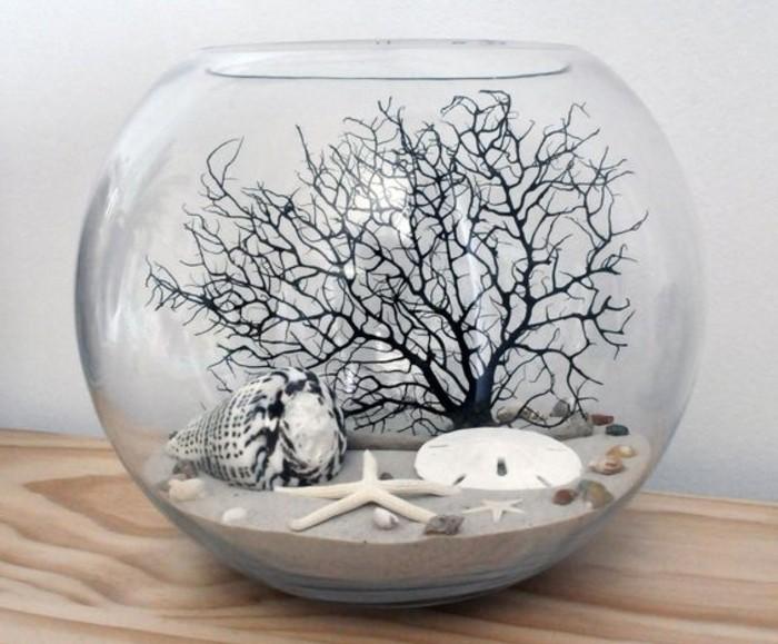 idee-pour-un-terrarium-desertique-decoree-de-coquilles-de-mers-mini-jardin-adorable