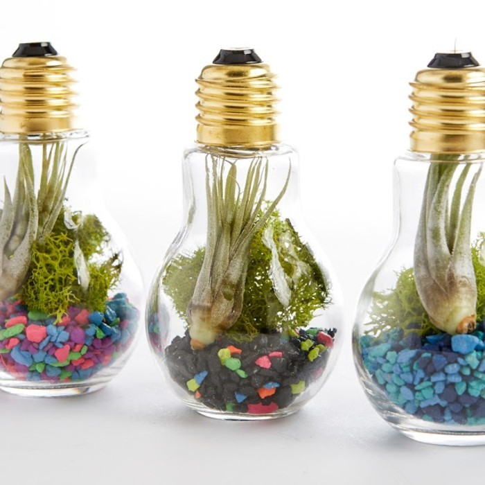 terrarium pour plantes tuto pour le faire et plus de 70 super mod les. Black Bedroom Furniture Sets. Home Design Ideas