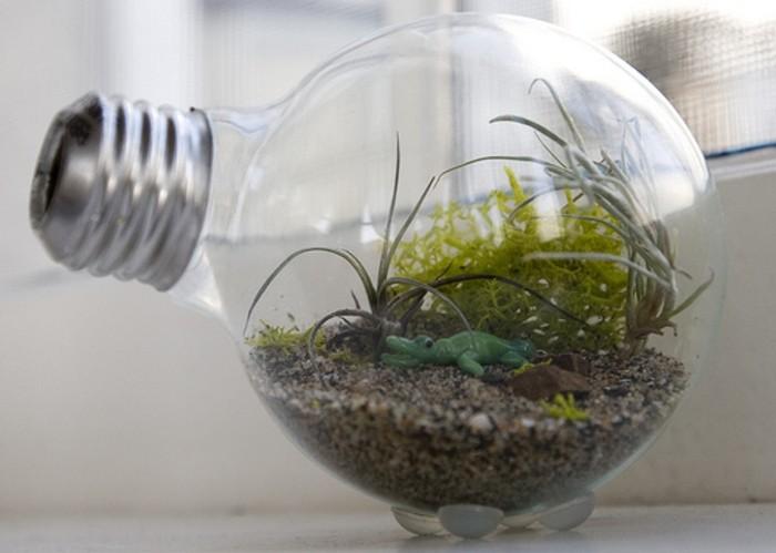 jardin-miniature-place-dans-une-ampoule-electrique-idee-pour-mini-terrarium-fantastique