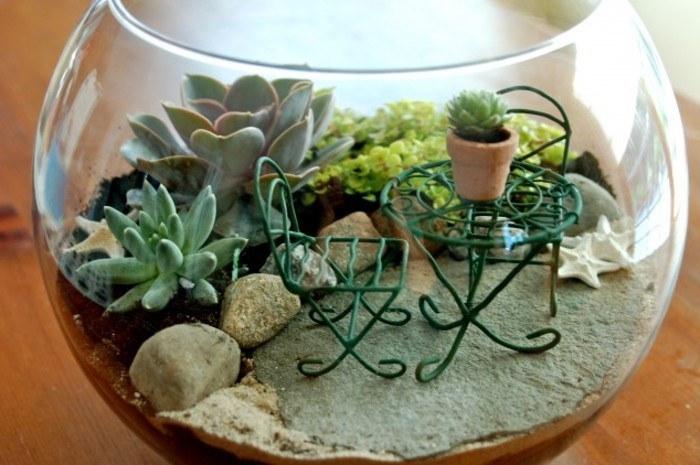 magnifique-idee-de-terrarium-plante-dans-un-bol-en-verre-idee-diy-superbe