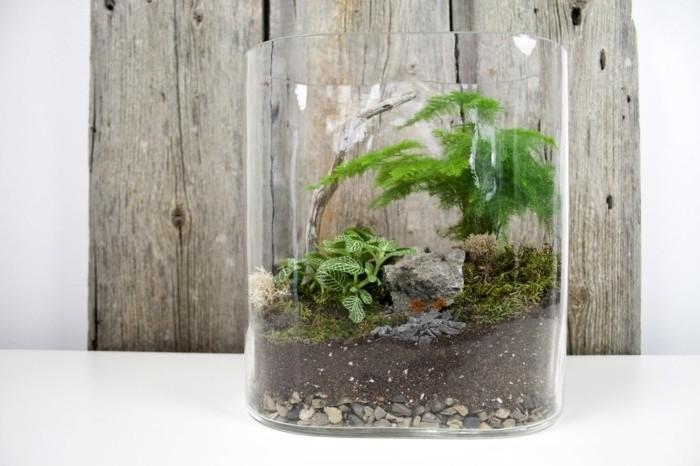 magnifique-suggestion-de-terrarium-tropical-a-faire-soi-meme-plante-terrarium-verte