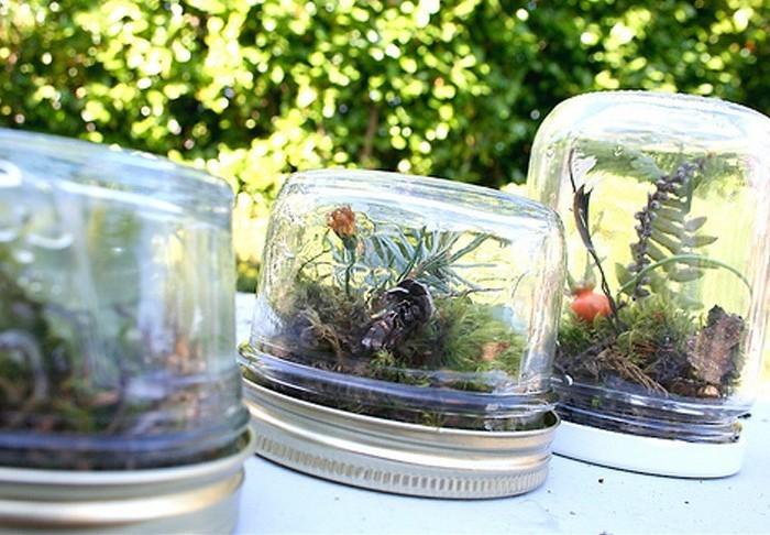 magnifiques-terrariums-dans-des-pots-en-verre-sympas-idee-comemnt-fabriquer-un-terrarium-diy