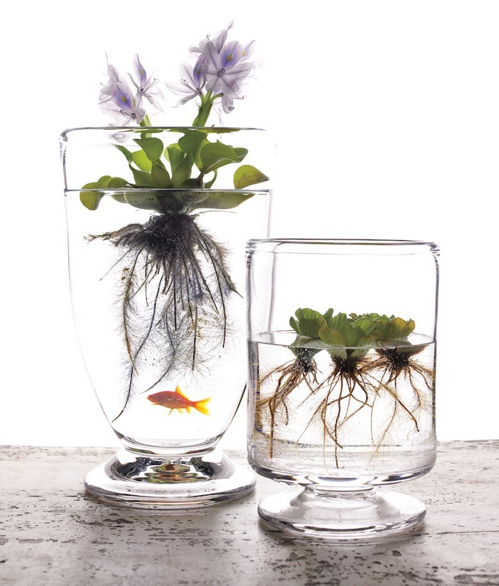 Vase Pour Fleurs Ikea