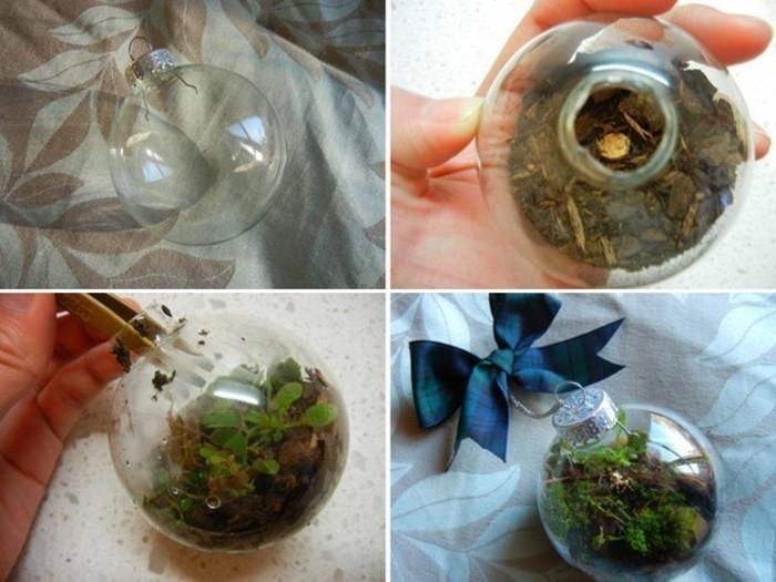 ... terrarium sympa, idée très créative comment fabriquer un terrarium