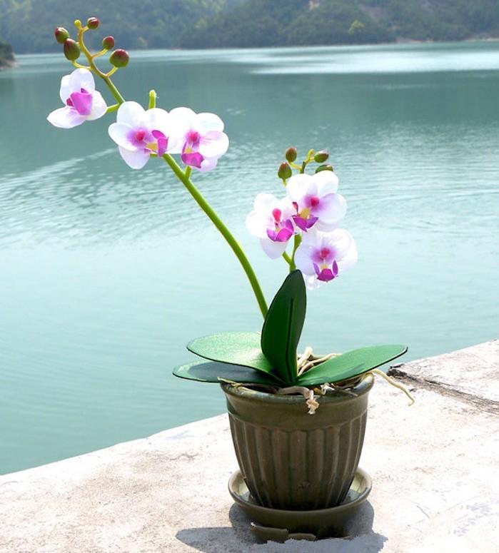 orchidee-artificielle-fleur-en-plastique-plantes-artificielles