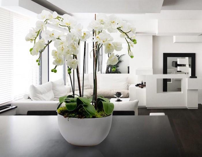 orchidee-artificielle-plante-artificielle-fleurs-artificielles