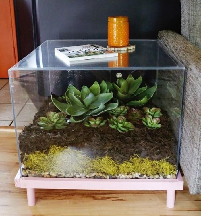 paludarium-diy-a-faire-soi-meme-pose-sur-une-table-de-service-plante-terrarium-verte