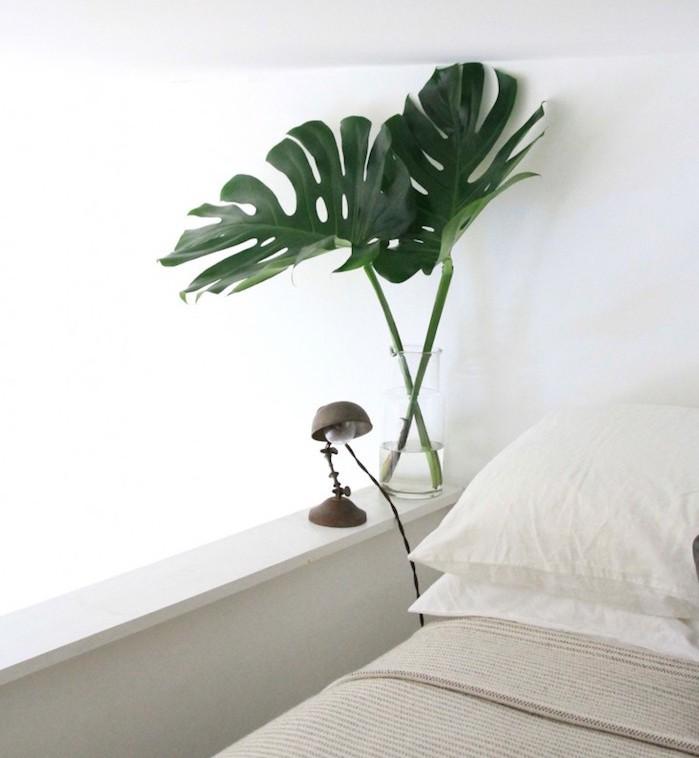 Plante d polluante offrez un bol d 39 air votre int rieur for Plante pour chambre