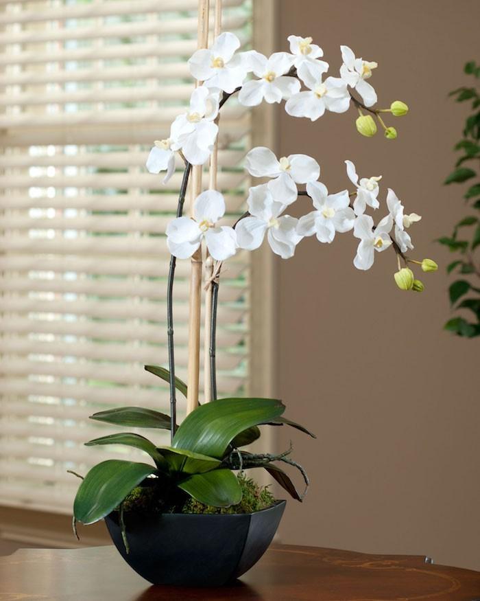 plante-artificielle-orchidee-artificielle-fleurs-artificielles
