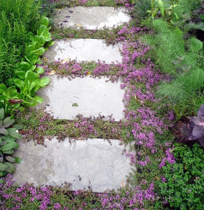 Alle de jardin originale nos en vidos pour faire une alle - Plante couvre sol qui pousse vite ...