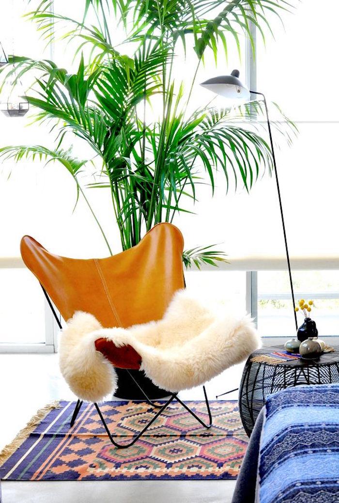 plante-depolluante-assainir-purifier-air-interieur-appartement-bureau-chambre-plantes-depolluantes