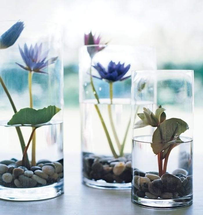 plante-terrarium-idee-fantastique-nunephares-dans-des-verres-simples