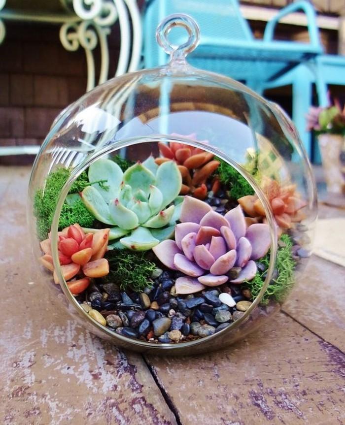 ... un jardin miniature, idee comemnt fabriquer un terrarium à suspendre