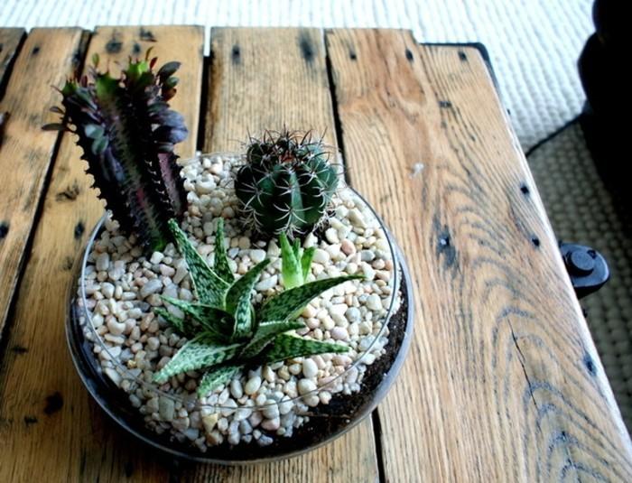 terrarium-cactus-tres-sumpa-une-suggestion-geniale-pour-fabriquer-un-terrarium