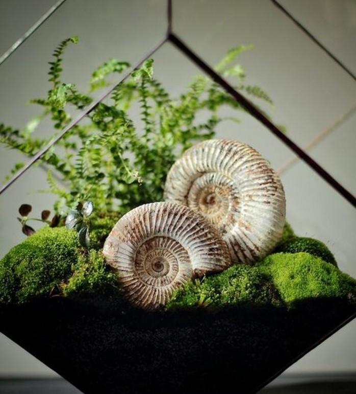 terrarium-plante-compose-de-mousse-et-de-fossils-idee-diy-comemnt-fabriquer-un-terrarium