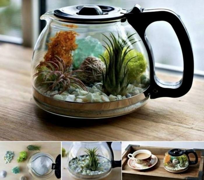 terrarium-plante-dans-une-cafetiere-suggestion-tres-sympa-et-simple-pour-votre-terrarium-diy