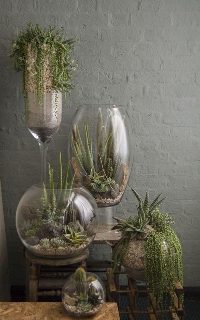 cactus sous cloche beautiful plantes vertes lart du terrarium une composition subtile with. Black Bedroom Furniture Sets. Home Design Ideas