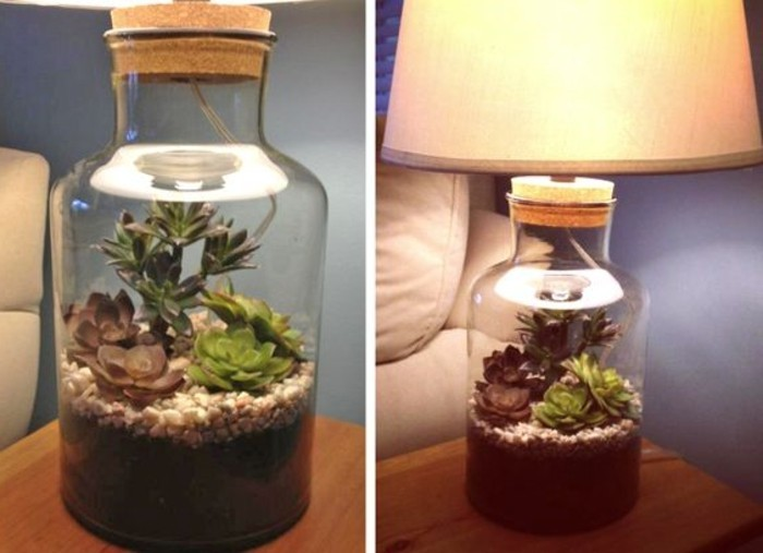 terrarium pour plantes tuto pour le faire et plus de 70. Black Bedroom Furniture Sets. Home Design Ideas