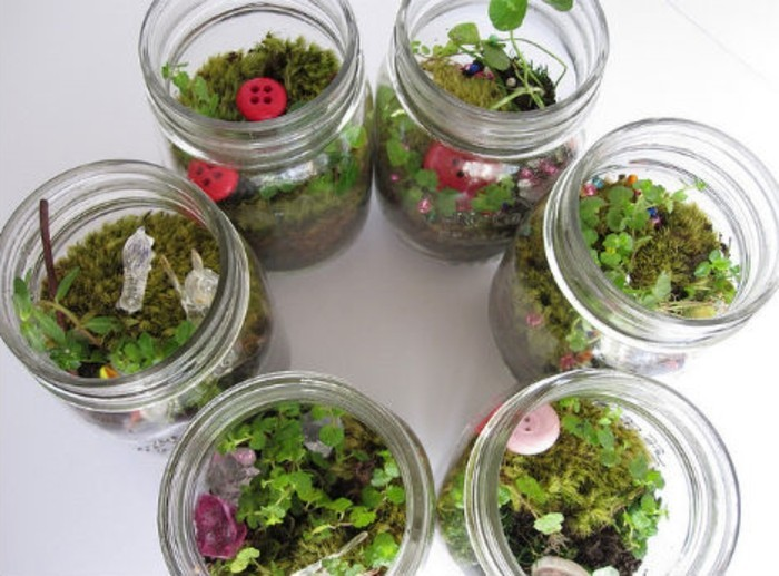 un-jardin-miniature-placee-dans-un-pot-en-verre-suggestion-tres-simple ...