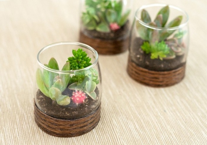 idée comment fabriquer un terrarium dans un verre, amenagement jardin ...