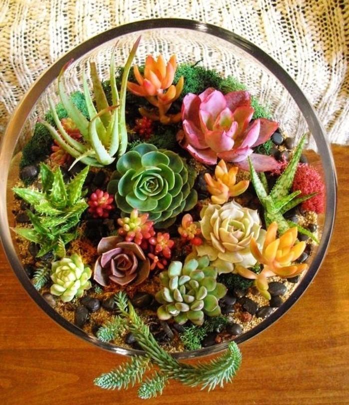 une-suggestion-tres-coloree-pour-votre-terrarium-diy-plante-terrarium-succulentes