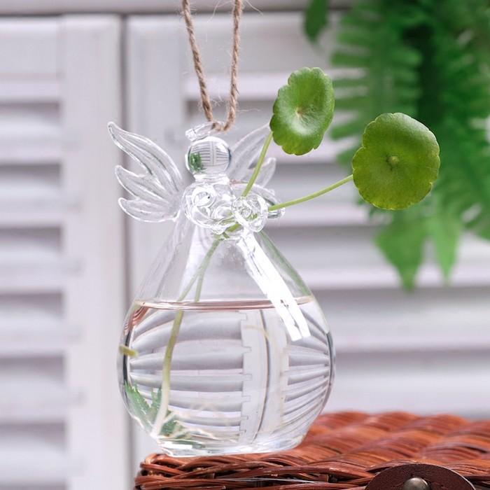 vase-en-verre-pour-plantes-eau-plantes-aquatiques