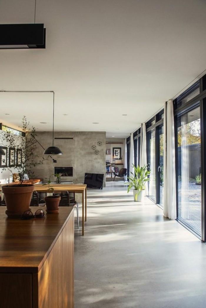 1-amenagement-salon-salle-a-manger-sol-en-beton-cire-plante-verte-d-interieur