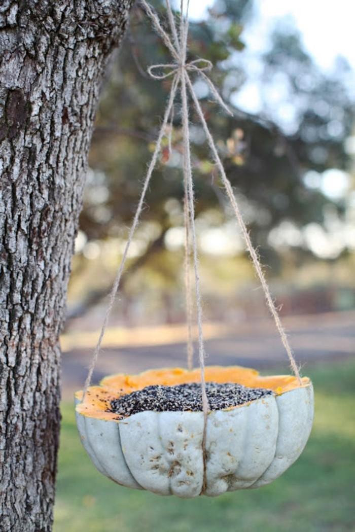 abri-oiseaux-citrouille-ficelle-arbre-idee-simple