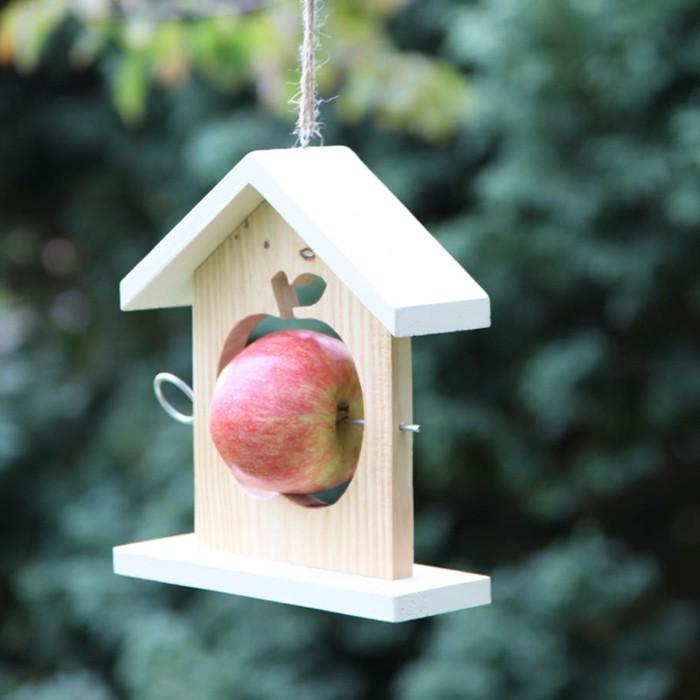 maison d oiseau en bois construire nichoir rsistant construire bois eco friendly orange violet. Black Bedroom Furniture Sets. Home Design Ideas