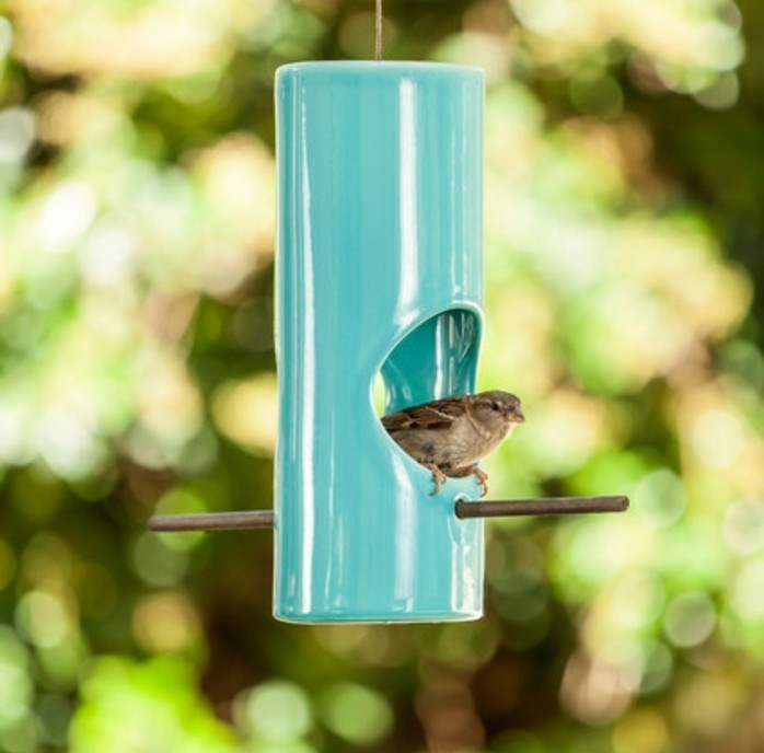 abri-oiseaux-mangeoir-en-bleu-claire-moineau
