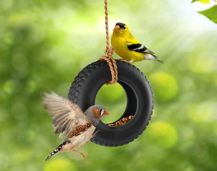 abri-oiseaux-mini-pneu-balancoire-mangeoir-nourriture-oiseaux-jeune-et-gris