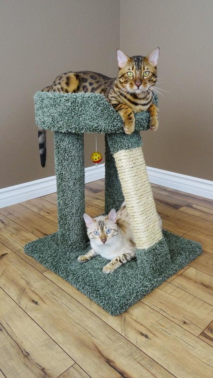 Griffoir Chat Carton Design l'arbre à chat - un terrain d'aventures et de repos pour