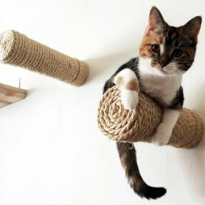 arbre-a-chats-grimpoir-pour-chat-original-monte-au-mur