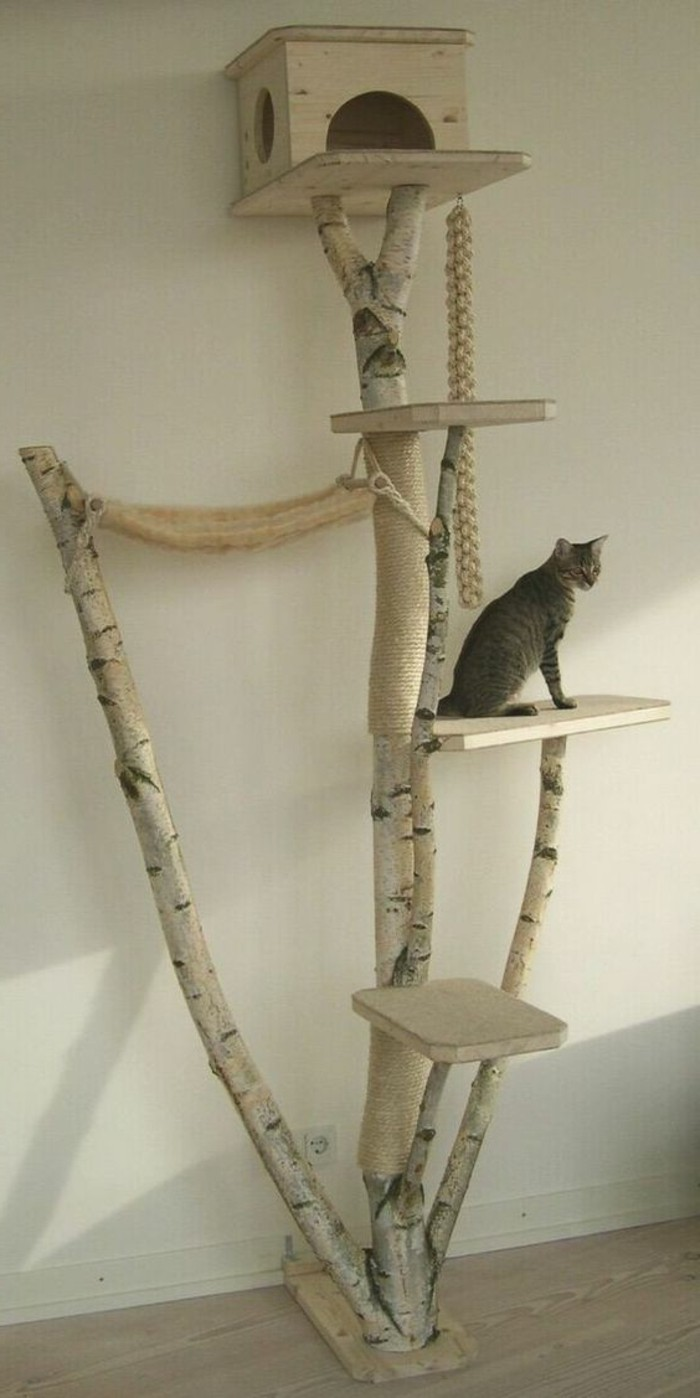 arbre a chat beau