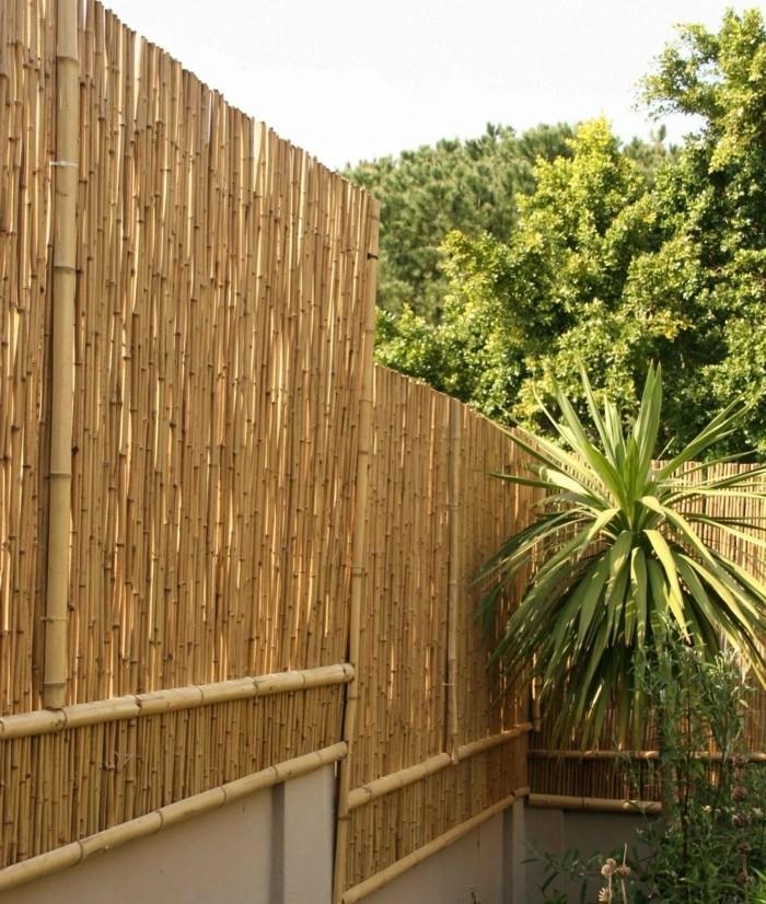 bambou-sec-cloture-originale-air-exotique-plantes-vertes