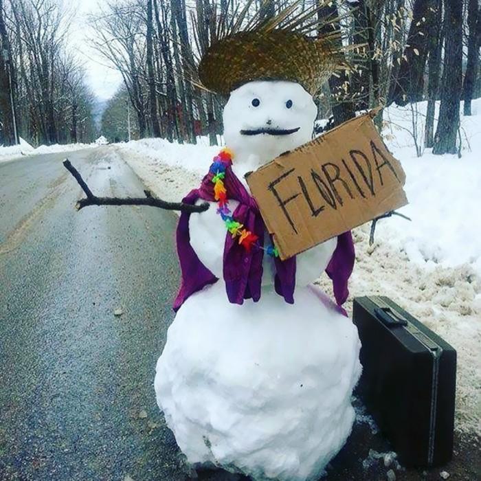 bonhomme-de-neige-tete-de-bonhomme-de-neige-voyage