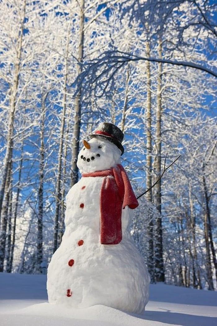 bricolage-bonhomme-de-neige-tete-de-bonhomme-de-neige-joliment-decore