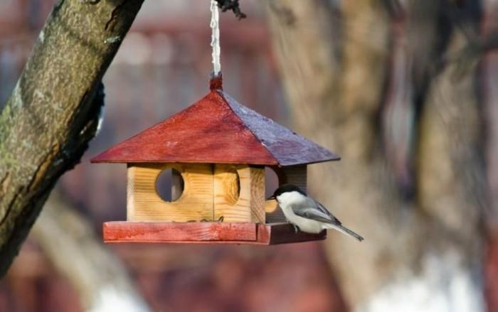 cabane-a-oiseaux-mangeoir-originale-en-bois-toit-rouge