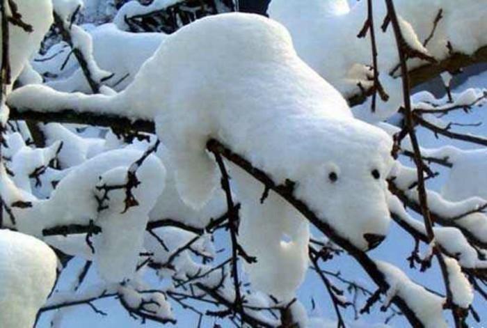 faire-un-bonhomme-de-neige-petit-bonhomme-de-neige-utiliser-le-branche