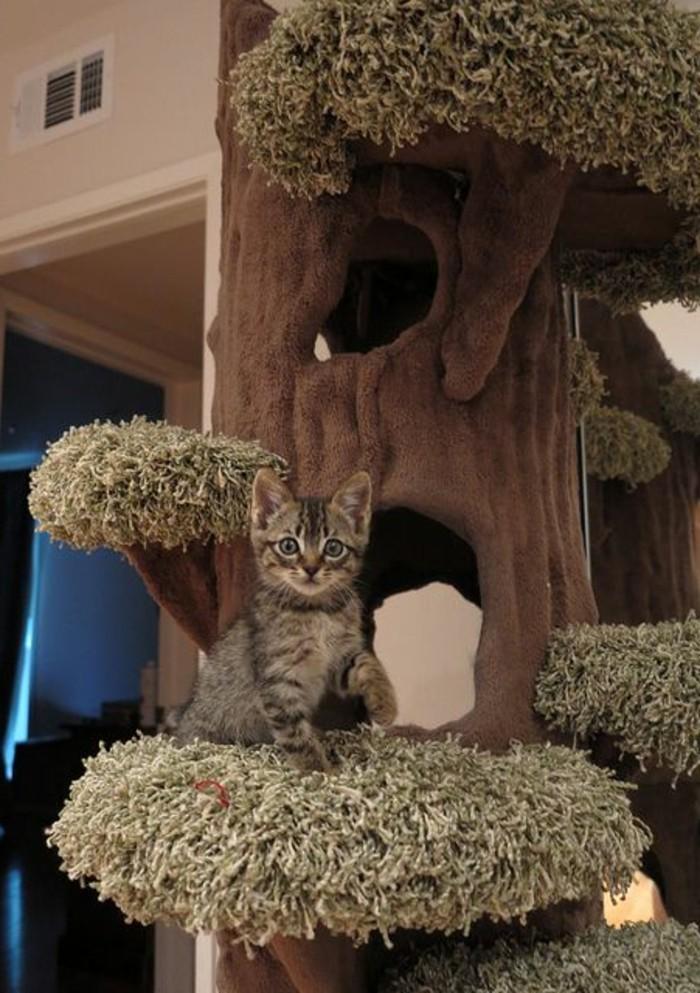 grand-arbre-a-chat-et-chat-mignon-jouets-et-accessoires-pour-chats