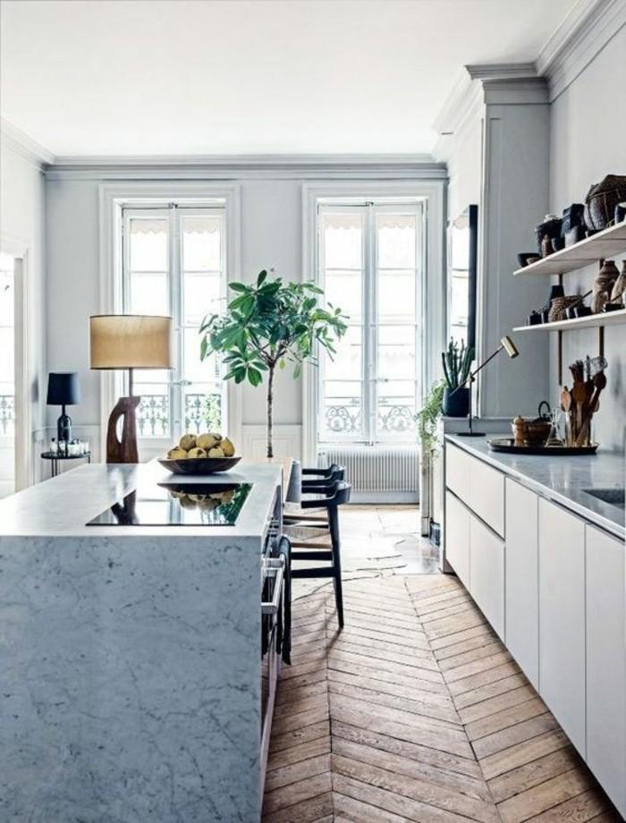 ilot-en-marbre-blanc-sol-en-parquet-clair-idee-deco-chambre-en-longueur-plante-verte-d-interieur