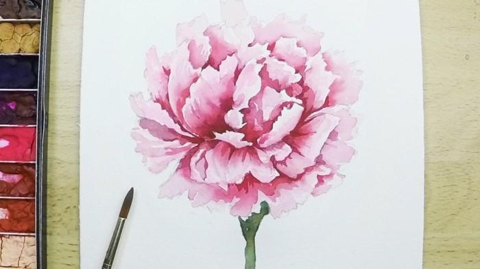 Comment dessiner une fleur 9 plantes dessiner soi m me - Comment couper une rose sur un rosier ...