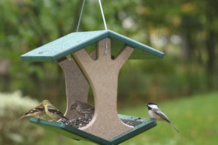mangeoire-pour-oiseaux-balancoire-pluie-automne-abri