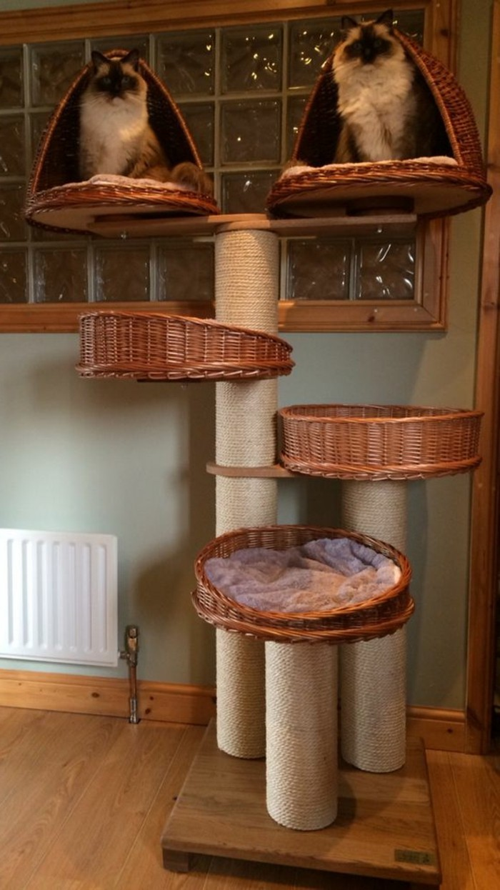 Comment Fabriquer Un Arbre À Chat l'arbre à chat - un terrain d'aventures et de repos pour