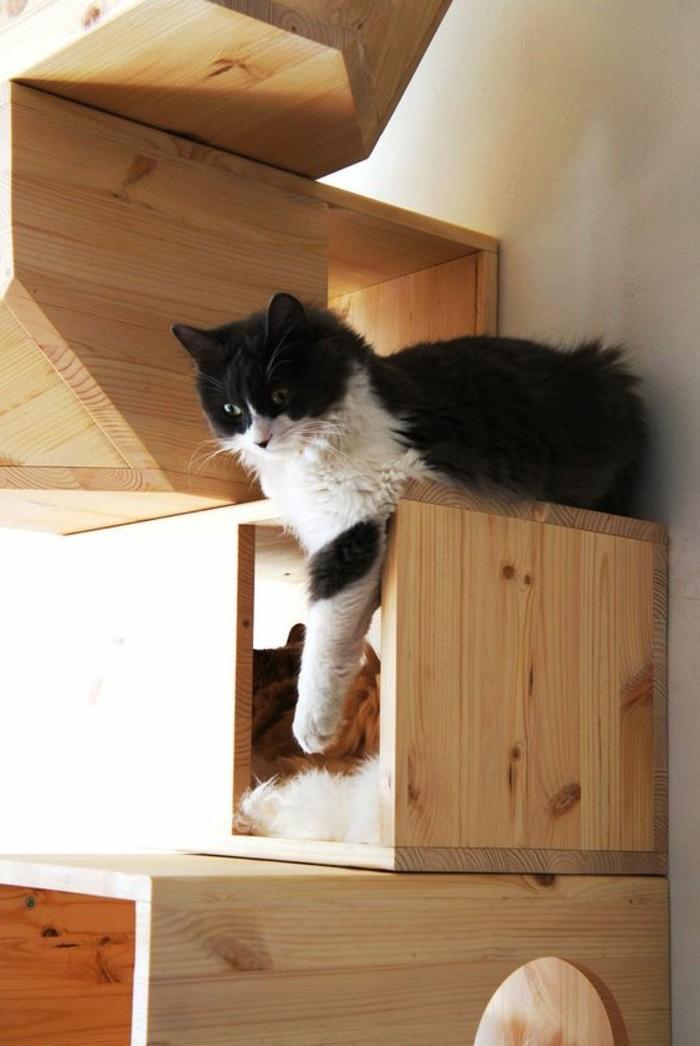 mobilier-pour-chat-etzgere-murale-pour-chats-en-bois