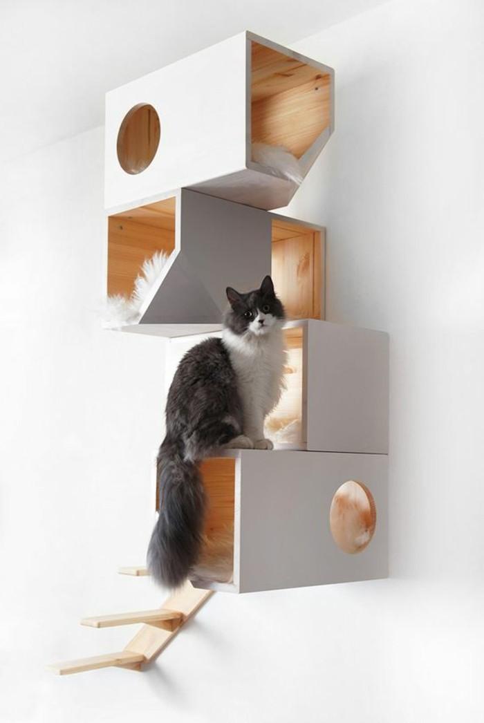 mobilier-pour-chat-jolie-etagere-pour-chats-design-mural
