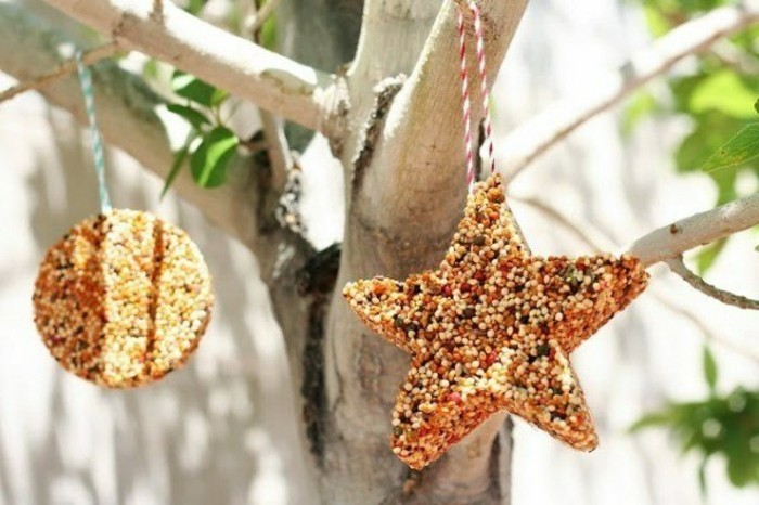 nourriture-oiseaux-etoile-en-grains-arbre-nature