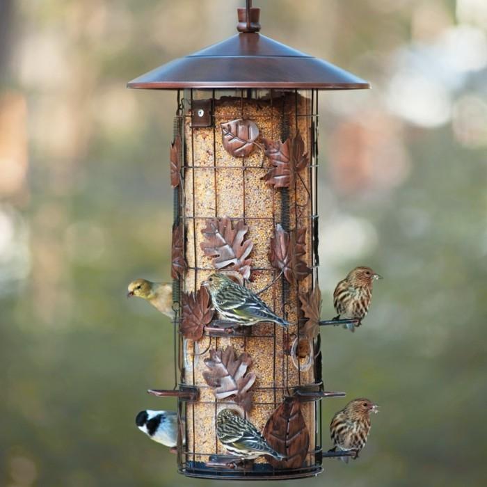 nourriture-oiseaux-feuilles-metaliques-motifs-naturels-oiseaux-contants